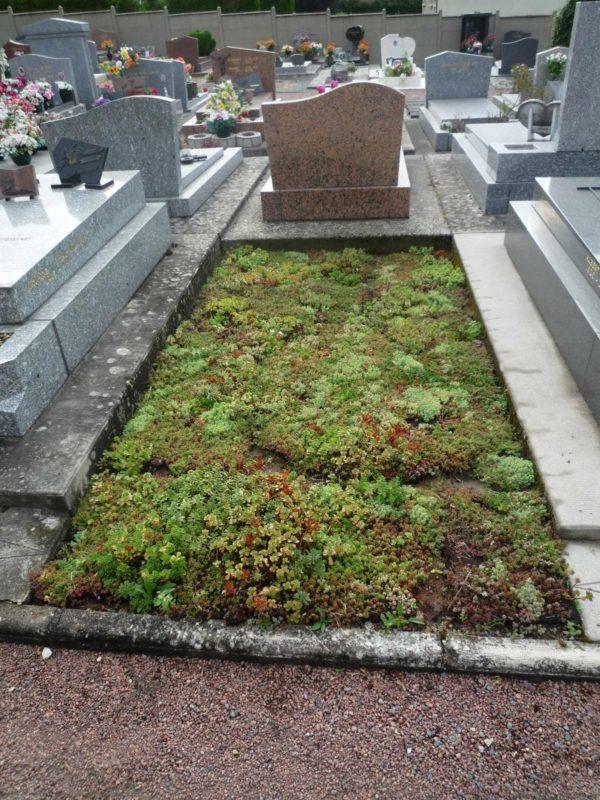 Plus de verdure au cimetière linois - Francois Pelletant