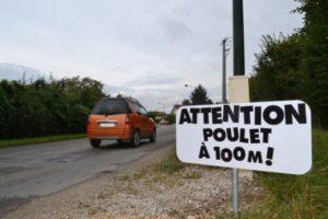 Panneaux de signalisation : les premières propositions